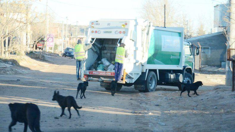 Buscan un servicio de recolección de residuos más eficiente.