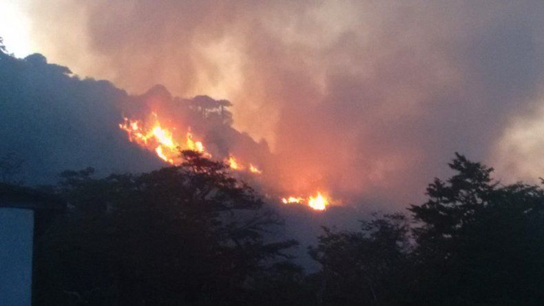 El fuego afectó 20 hectáreas del bosque nativo de Moquehue