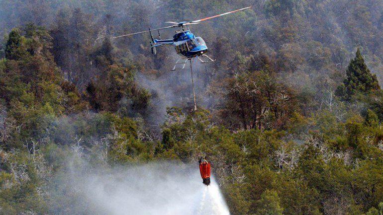El pasado 5 de marzo un incendio en Moquehue arrasó con diez hectáreas de bosque
