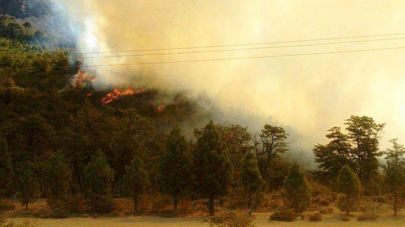 Llegan brigadistas chilenos para enfrentar el incendio