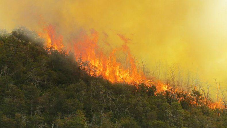 El incendio está descontrolado y afectó bosque nativo y araucarias.