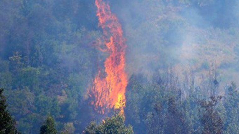 Alerta en el Parque Lanín por un incendio en Chile