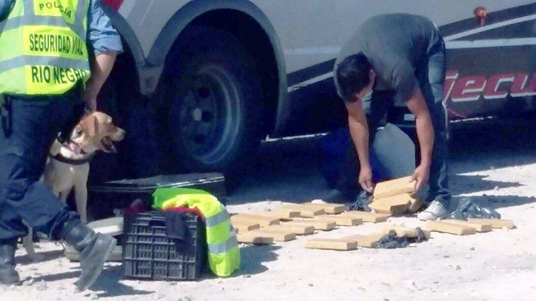 Los ladrillos de marihuana que encontró la Policía dentro del colectivo.