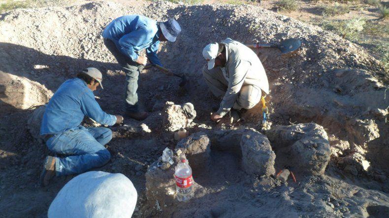 Se realizaron dos campañas de excavación que contaron con el apoyo de la empresa que opera en el área.