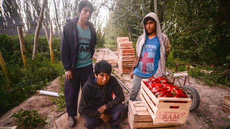 La laboriosa vida de los nuevos colonos del valle