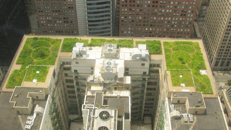 La modalidad techos verdes ya se aplica en muchas ciudades del mundo.