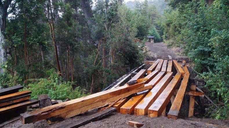 El puente y los árboles talados.