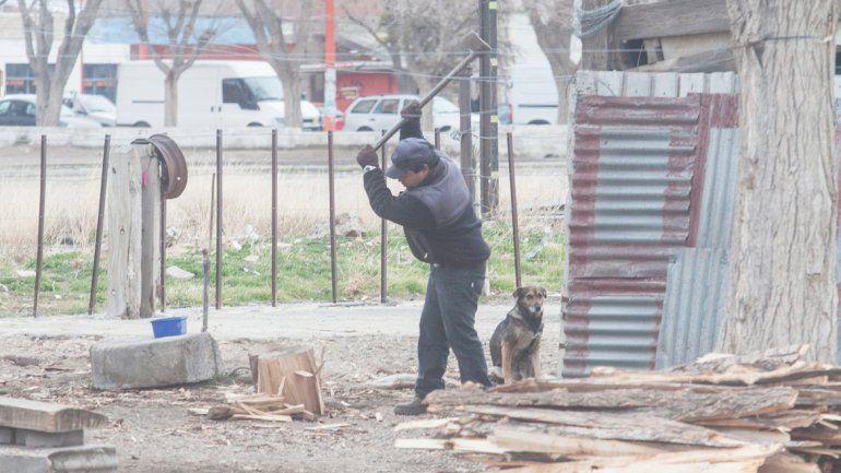 El operativo leña llega anualmente a miles de familias neuquinas.