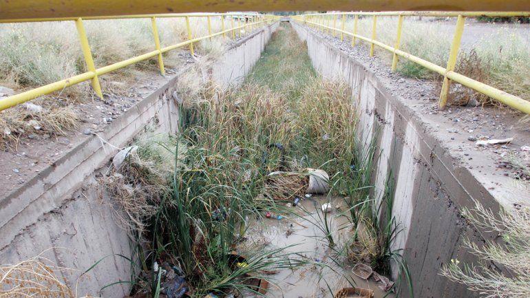 Las malezas crecen dentro de los canales que desagotan las lluvias.