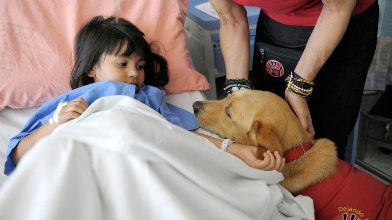 El uso de mascotas como ayudantes de terapias se remonta a 1792.