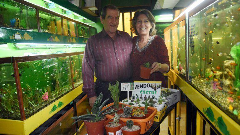 La pareja atiende el negocio y capacita a quien esté interesado en los peces o los cactus.