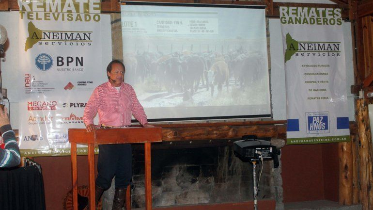 Se celebró el 5º Remate Filmado de Invernada en Junín de los Andes