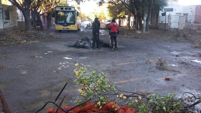 Una vecina retiene un colectivo en calle Paimún y Chocón del barrio Confluencia.