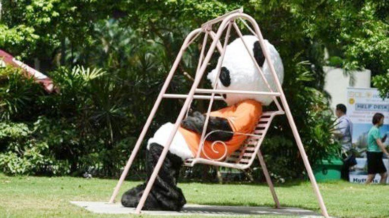 Debajo de la piel de un tierno panda