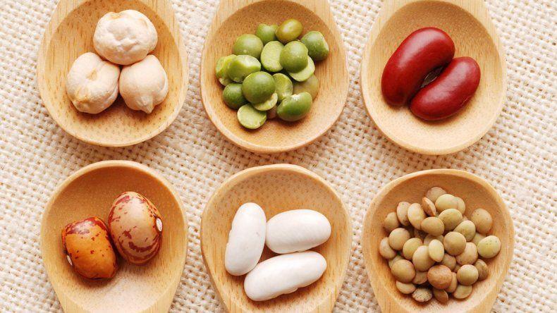 Hay países donde estas semillas forman parte fundamental de la alimentación y de su tradición.