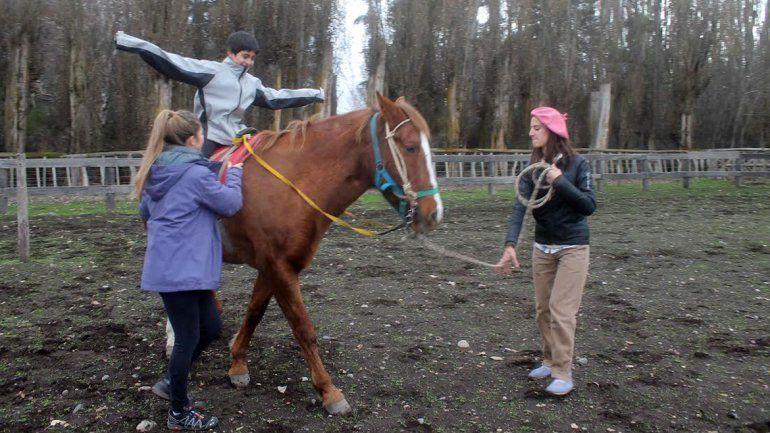 Junín de los Andes ya tiene su equipo para realizar equinoterapia