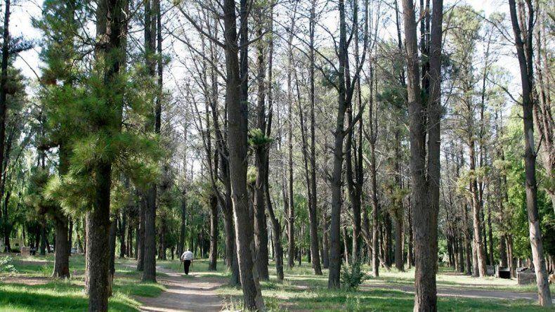 El Municipio se opuso a la venta del parque Victoria cerca del río Neuquén.
