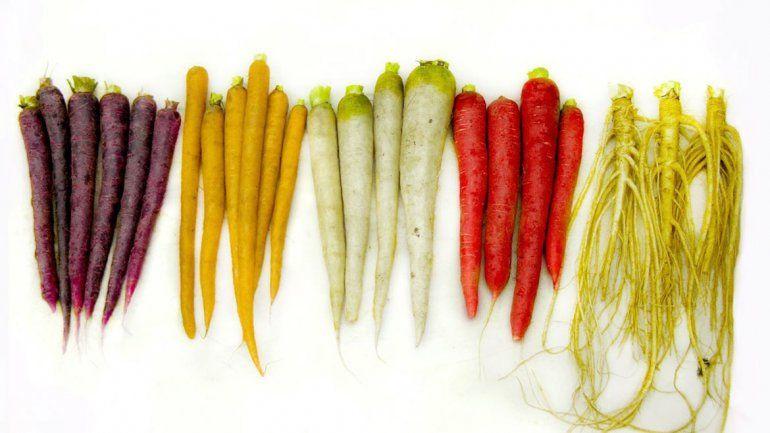 La pigmentación está relacionada con las propiedades nutricionales.