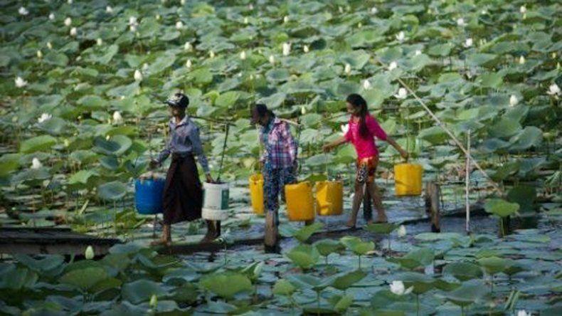 Mujeres laosianas transportando agua para beber.