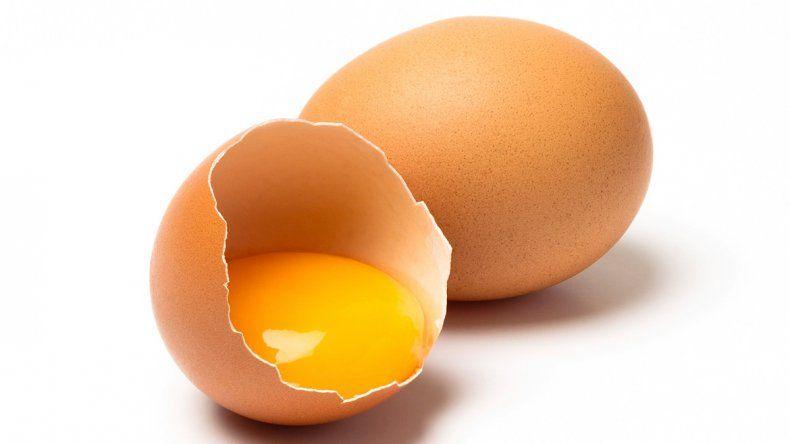 La yema concentra la mayor cantidad de proteína