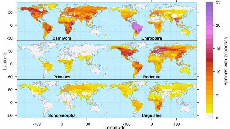 Investigadores de EE. UU. han elaborado un mapa global de las zoonosis.
