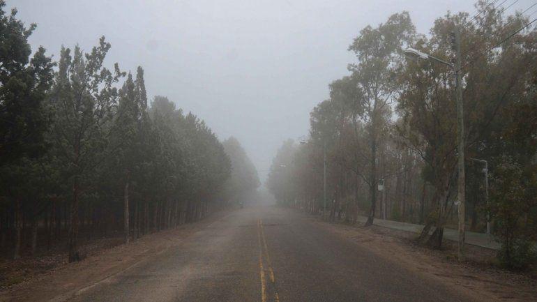 Calle Riavitz en la ciudad de Neuquén.