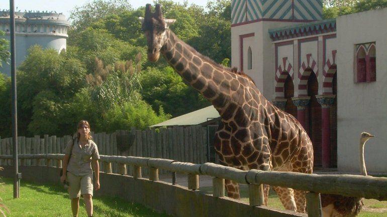 Cierra el zoológico de Buenos Aires tras 140 años