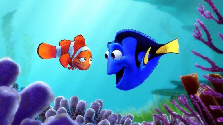 NatGeo advirtió que por el éxito de Buscando a Dory aumentará un 40% la venta de los peces cirujano