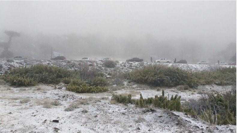 Largas colas y hielo en el paso Pino Hachado