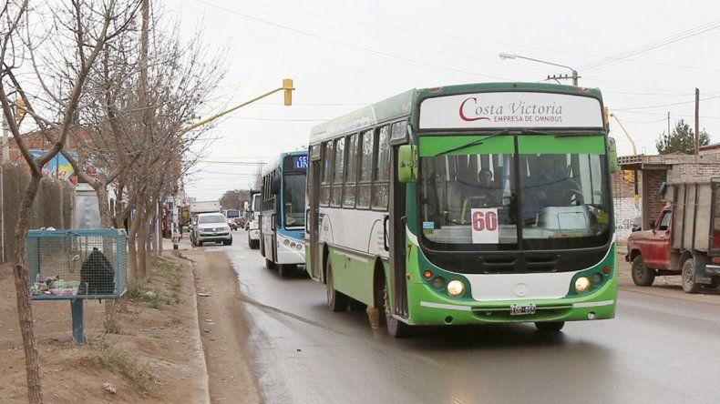 La empresa Costa Victoria es familiar y funciona desde 1992.