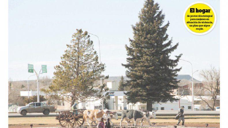 103º aniversario de Zapala