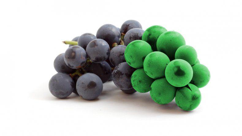 Cada vez más bodegas emplean estos términos para diferenciar sus vinos. ¿Qué son y a qué aplican?