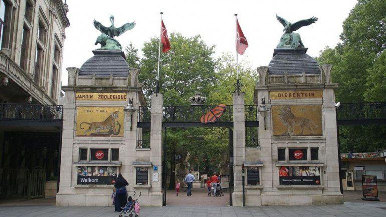 Zoo en Bélgica recauda 12 mil euros con Pokémon Go
