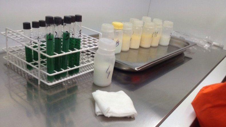 El banco de leche materna de Cutral Co es el sexto que hay en el país.