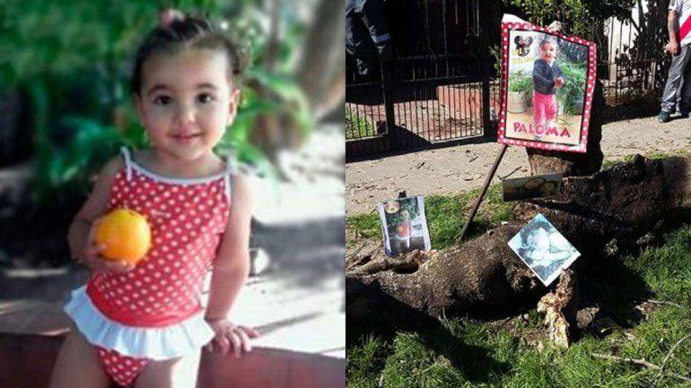 La pequeña se llamaba Paloma y estaba junto a su mamá en la puerta de su casa en el momento del accidente.