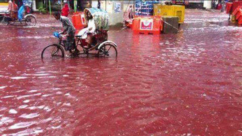 Por una festividad, corrieron ríos de sangre por la capital de Bangladesh