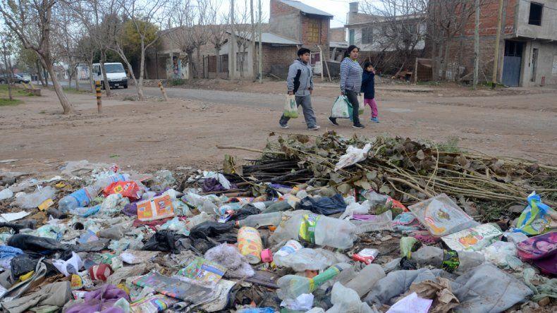 Los basurales se multiplican en algunos barrios de la ciudad.