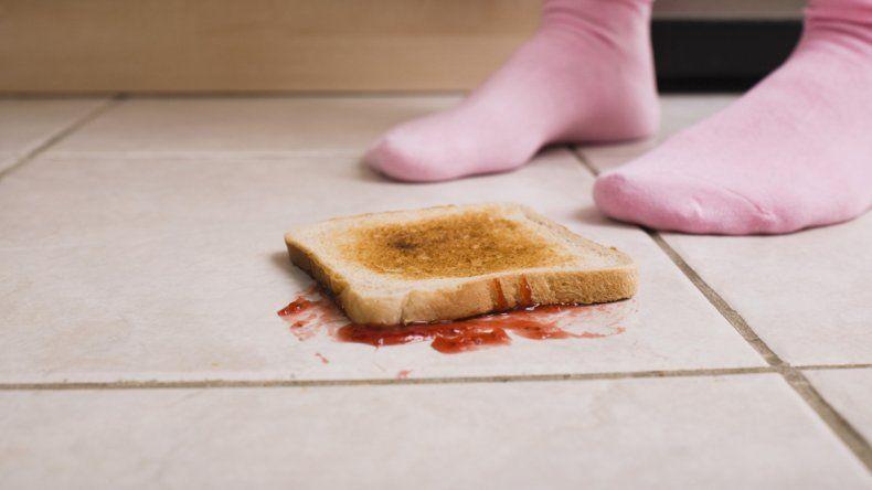 Los resultados fueron publicados en una revista especializada. Los alimentos que tienen más humedad son los que más rápido se contaminan en el piso.