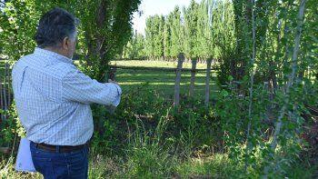 Mellado muestra que no hay rastros de matayuyo ni de ningún herbicida.
