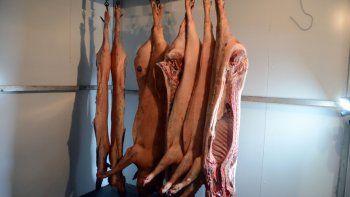 Los cerdos en Neuquén son libres de aftosa sin vacunación.