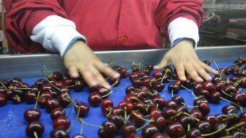 La Nación declaró la emergencia agropecuaria en Neuquén
