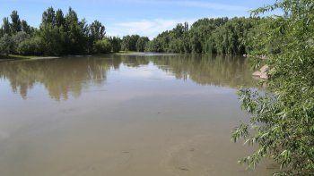 La ribera de la calle 4. El río Neuquén tiene costas naturales frondosas.
