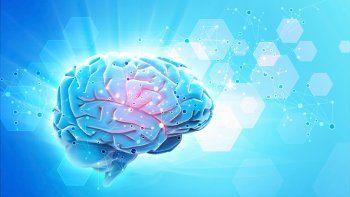 El trabajo del especialista y su equipo primero fue probado en roedores y después en personas con epilepsia. Los resultados preliminares son optimistas. El chip se inserta quirúrgicamente.