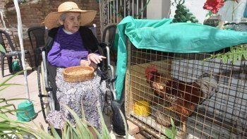 Fidelina no sólo disfruta de buenos momentos junto a Coco, sino que el gallo la ayuda en su enfermedad.