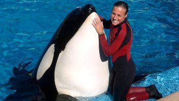 murio en cautiverio la orca que habia matado a su entrenadora