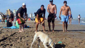 La intendencia de Montevideo prohibió animales domésticos en las playas.