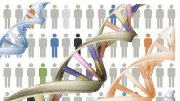 los genes influyen al elegir a nuestra pareja