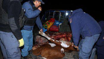 atraparon a cuatreros que huian con una vaca y un ternero faenados