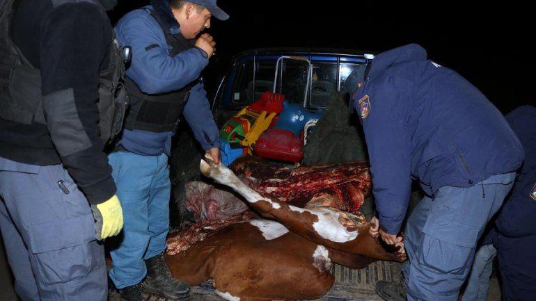 Atraparon a cuatreros que huían con una vaca y un ternero faenados