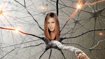 La descubrió un neurocientífico argentino en el Reino Unido.
